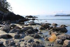 弗兰克海岛, Tofino, BC 免版税库存图片