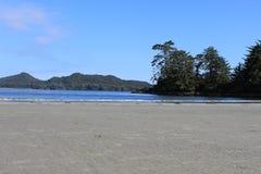 弗兰克海岛, Tofino, BC 免版税库存照片