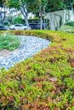 贝弗利庭院停放尼斯被整理的灌木、花和石头在房子,前院前面 设计高例证横向计划图表分解力 免版税库存照片