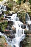 弗吉尼亚水 库存图片