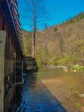 弗吉尼亚爬行物足迹木支架 免版税库存照片