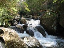 弗吉尼亚爬行物足迹瀑布 库存照片