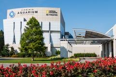 弗吉尼亚水族馆和海洋科学中心与红色花 免版税库存图片