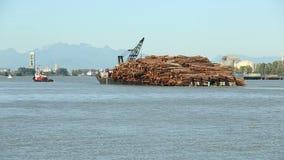 弗拉塞尔河装载了日志驳船 股票视频