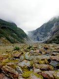 弗朗兹约瑟夫冰川谷,新西兰 库存图片