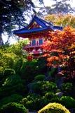 弗朗西斯科庭院日本圣茶 免版税库存照片