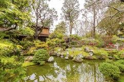 弗朗西斯科庭院日本圣茶 库存图片