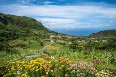 弗洛勒斯海岛,亚速尔群岛,葡萄牙绿色海岸线  免版税库存图片