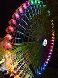 弗累斯大转轮在晚上 库存图片