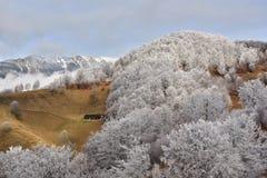 弗罗斯特土地在喀尔巴阡山脉和特兰西瓦尼亚村庄 免版税图库摄影