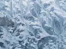 弗罗斯特样式,冰在玻璃窗开花 免版税图库摄影