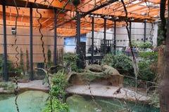 弗罗茨瓦夫动物园在波兰 库存图片