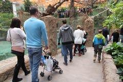 弗罗茨瓦夫动物园 免版税库存图片