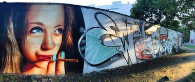 弗罗茨瓦夫, POLAND-AUGUST 30日2016年:在卑劣的五颜六色的街道画街市,描述人面 免版税库存照片