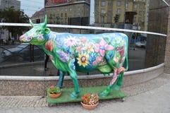 弗罗茨瓦夫Polsha 在花的母牛 免版税库存照片