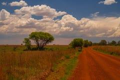 弗里德堡圆顶风景在南非 免版税图库摄影