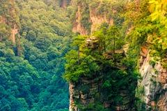 张家界全国森林公园,武陵源,中国 免版税图库摄影