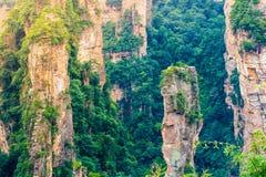 张家界全国森林公园,武陵源,中国 库存照片