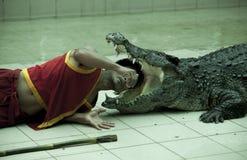 张开一条巨大的鳄鱼,教练员的下颌放他的头入危险掠食性动物的嘴 泰国普吉岛动物园 免版税图库摄影
