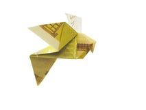 从200张欧洲钞票的鸟 库存图片
