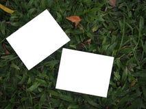 2张空白的照片和绿色背景 免版税图库摄影