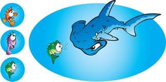 弦槌鲨鱼 库存图片