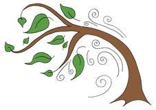 弯曲在一个大风天的树 库存图片