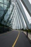 弯曲在花圆顶附近的空的路在新加坡 免版税库存照片