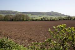 弯曲处峰顶,萨默塞特,英国 免版税库存图片