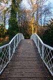 弯曲木头桥梁与白合金区域和秋季树的 库存图片