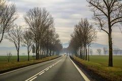 弯曲的双线道乡下公路绕通过树 图库摄影
