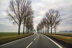 弯曲的双线道乡下公路绕通过树 库存图片