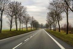 弯曲的双线道乡下公路绕通过树 免版税图库摄影