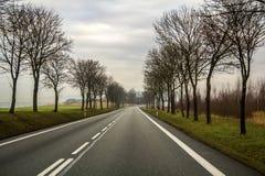 弯曲的双线道乡下公路绕通过树 免版税库存照片
