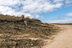 弯曲的土路通过反对冬天风景的干草 库存图片
