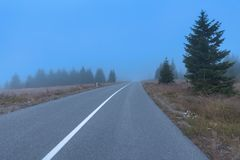 弯曲的柏油路在有雾的天气的山森林里 免版税图库摄影