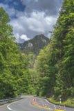 弯曲的柏油路在阿尔卑斯的森林里 库存照片