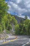 弯曲的柏油路在阿尔卑斯的森林里 免版税库存照片