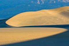 弯曲的沙丘轻的沙子 免版税库存照片