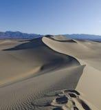 弯曲的沙丘 库存照片