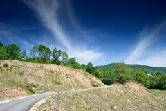 弯曲的空的绿叶路 免版税库存图片