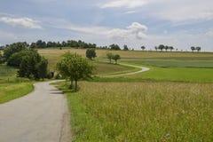 弯曲的窄路上升, Ofingen, Baden 库存图片