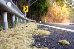弯曲的路和草 免版税库存照片