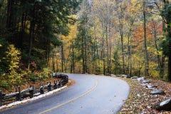 弯曲的路在秋天 免版税图库摄影