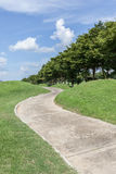 弯曲的路绿色高尔夫球场和美好的自然场面 免版税库存照片