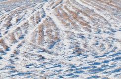 弯曲的雪轨道 免版税库存照片