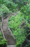 弯曲石楼梯在Vang Vieng 免版税图库摄影