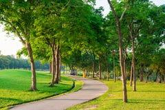 弯曲通过公园的被铺的道路 平安的路 库存图片
