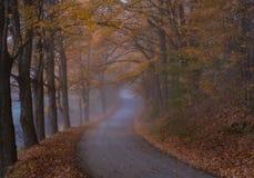 弯曲道路在秋天在伍德斯托克佛蒙特 免版税图库摄影