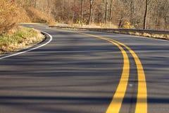 弯曲道路通过森林 免版税库存图片